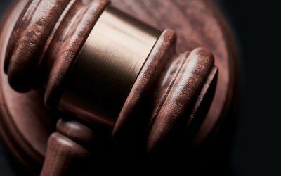 Der größte Pain Point der Verpackungsbranche beim Thema Circular Economy: Unsicherheit zu gesetzlichen Regulierungen