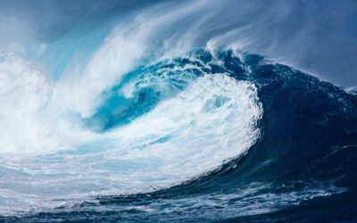 White Paper: A sustainability tsunami is heading towards the packaging industry
